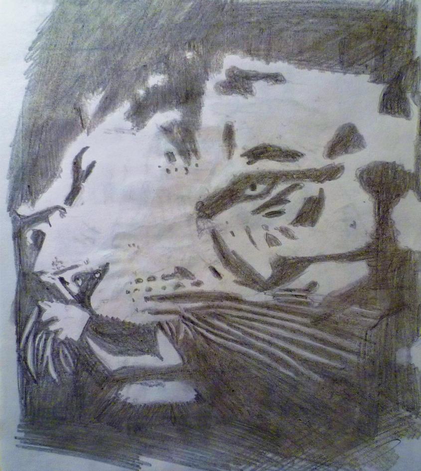 Random Tiger by Sandro98ch
