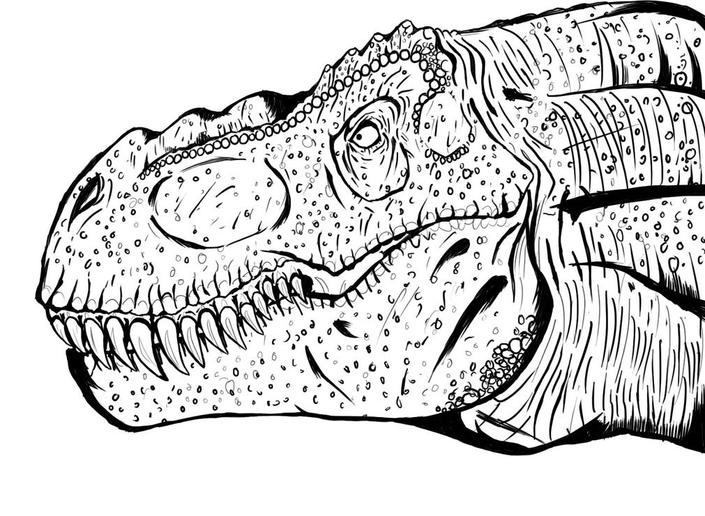 T Rex Line Art By Xenomorph01 On DeviantArt