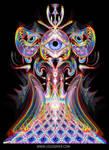 Unfolding vision