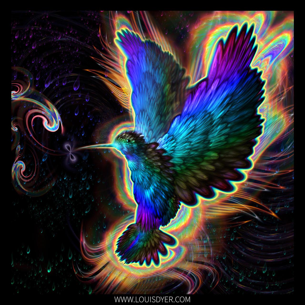 Hummingbird by LouisDyer