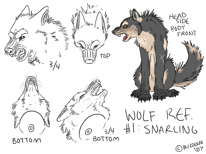Wolf side view drawing - photo#31