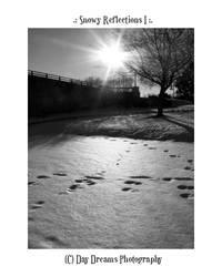.:Snowy Reflections I:.