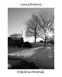 .:Snowy Reflections II:.