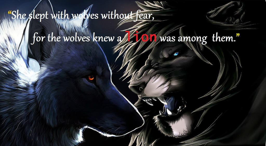 wolf vs lion by...