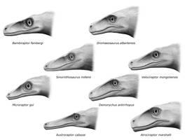 Dromaeosaurids by olofmoleman