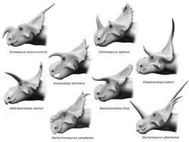 Centrosaurinae by olofmoleman