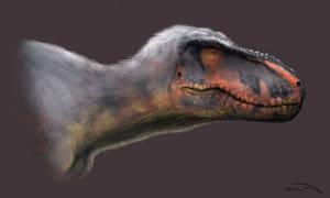 Tyrannosaurus rex: Trix Portrait