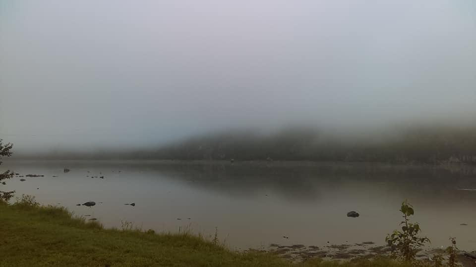 Fog again by YersaCaltara