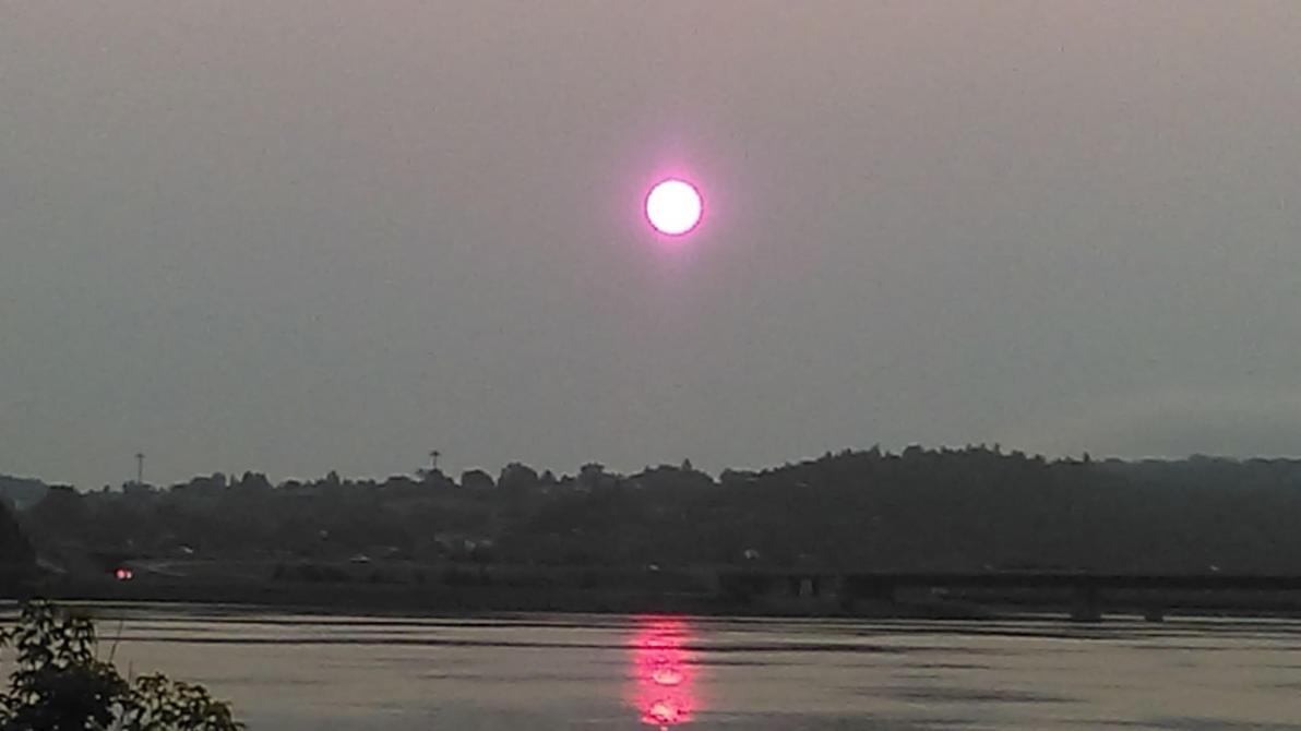 pinky sun by YersaCaltara