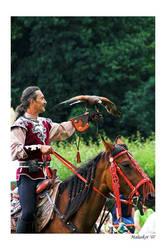 Falkner zu Pferd by malaskor