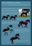 Horse Rebuilding Tutorial