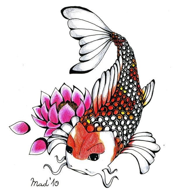 koi carp tattoo