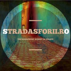 StradaSforii  autumn squares - 1
