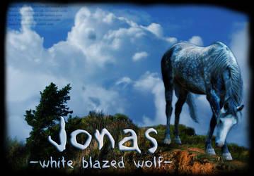 Jonas by boxofpeaches