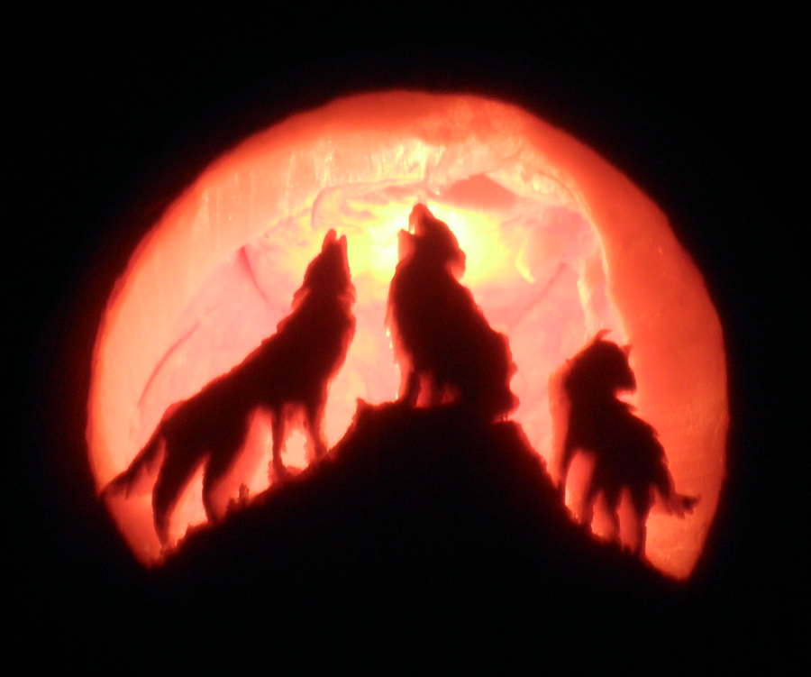 Wolf carving by juggernaut on deviantart