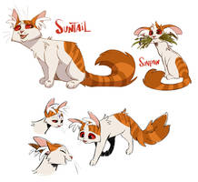 Suntail by beffalumps