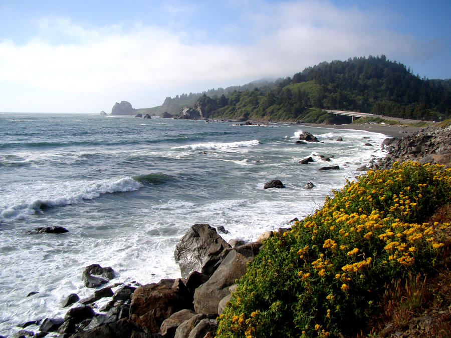 Highway 101 seascape by Geotripper