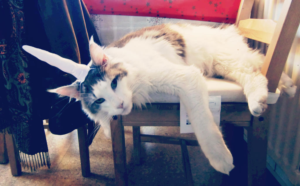 inflatable unicorn horn for cats by MiniBaah