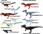 Diversity of Raptors