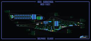 Saratoga MSD