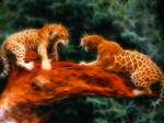 Leopard Fighting Fractalius