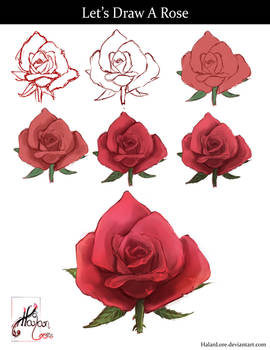 Let's Draw A Rose