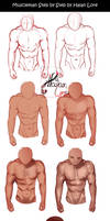 Muscleman Step by Step