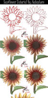 Sunflower Step by Step [video process]