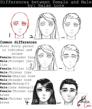 Differences Between Females and Males
