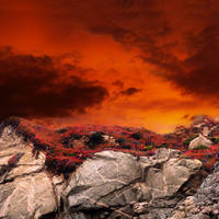 red it is.... by VaggelisFragiadakis
