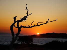 morning in Chrissy Island by VaggelisFragiadakis