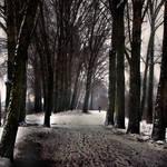 following  the path by VaggelisFragiadakis