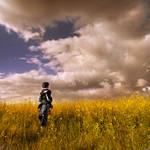 spring fields....