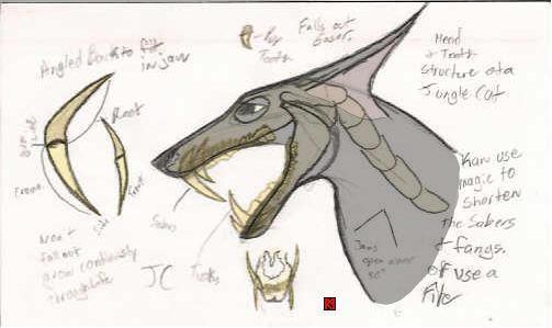 Jungle Cat Head Anatomy by MystRunner916 on DeviantArt
