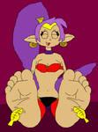 Shantae's Ticklish Feet