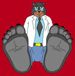 LunoBurr's Big Bear Feet Tease