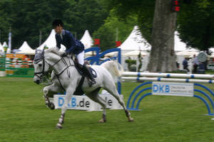 Show Jumping Stock 019 by LuDa-Stock