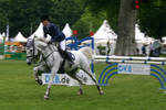 Show Jumping Stock 019