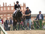 Dressage Riding Competition Stock Heroic Walk