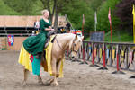 Medieval Lady Maid Riding Stock