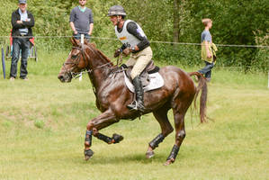Eventing Stock - Fast Canter by LuDa-Stock