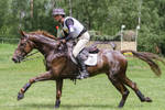 3DE Cross Country Full Speed Galop Series