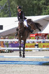 3DE Show Jumping Phase Stock 188