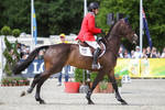 3DE Show Jumping Phase Stock 167