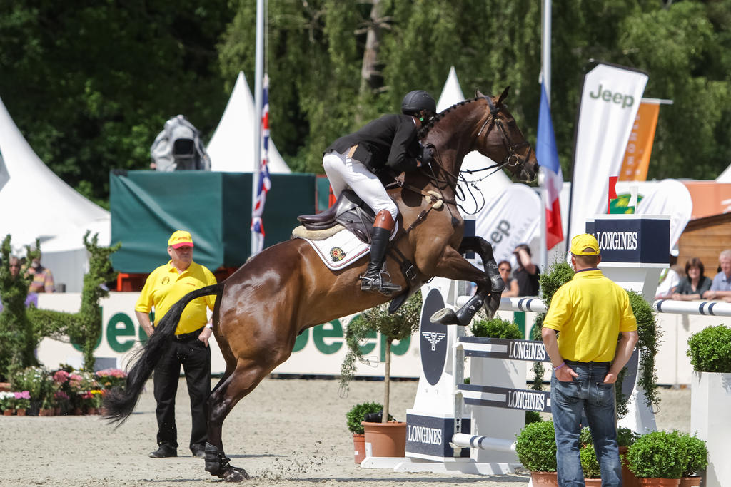 3de Show Jumping Phase Stock 82 A Bit Too Far By Luda