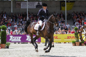 3DE Show Jumping Phase Stock 2 by LuDa-Stock