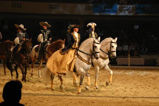 Baroque Parade Horse Riding Stock