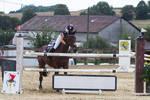 Show Jumping Refusal Series 14 by LuDa-Stock
