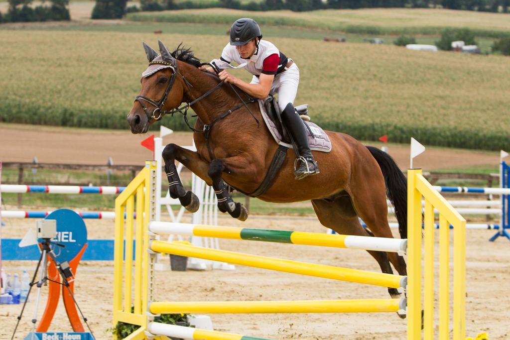 Level 5 Showjumping - L-Springen 58 by LuDa-Stock