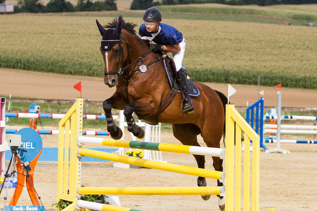 Level 5 Showjumping - L-Springen 57 by LuDa-Stock